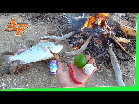 Thumbnail: Catch Cook Chilli Lime Fish on the fire EP.358