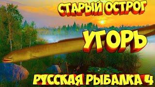 русская рыбалка 4 Угорь озеро Старый Острог рр4 фарм Алексей Майоров russian fishing 4