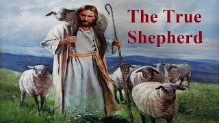 THE TRUE SHEPHERD - END-TIMES WARNING - WOLVES IN SHEEP CLOTHING