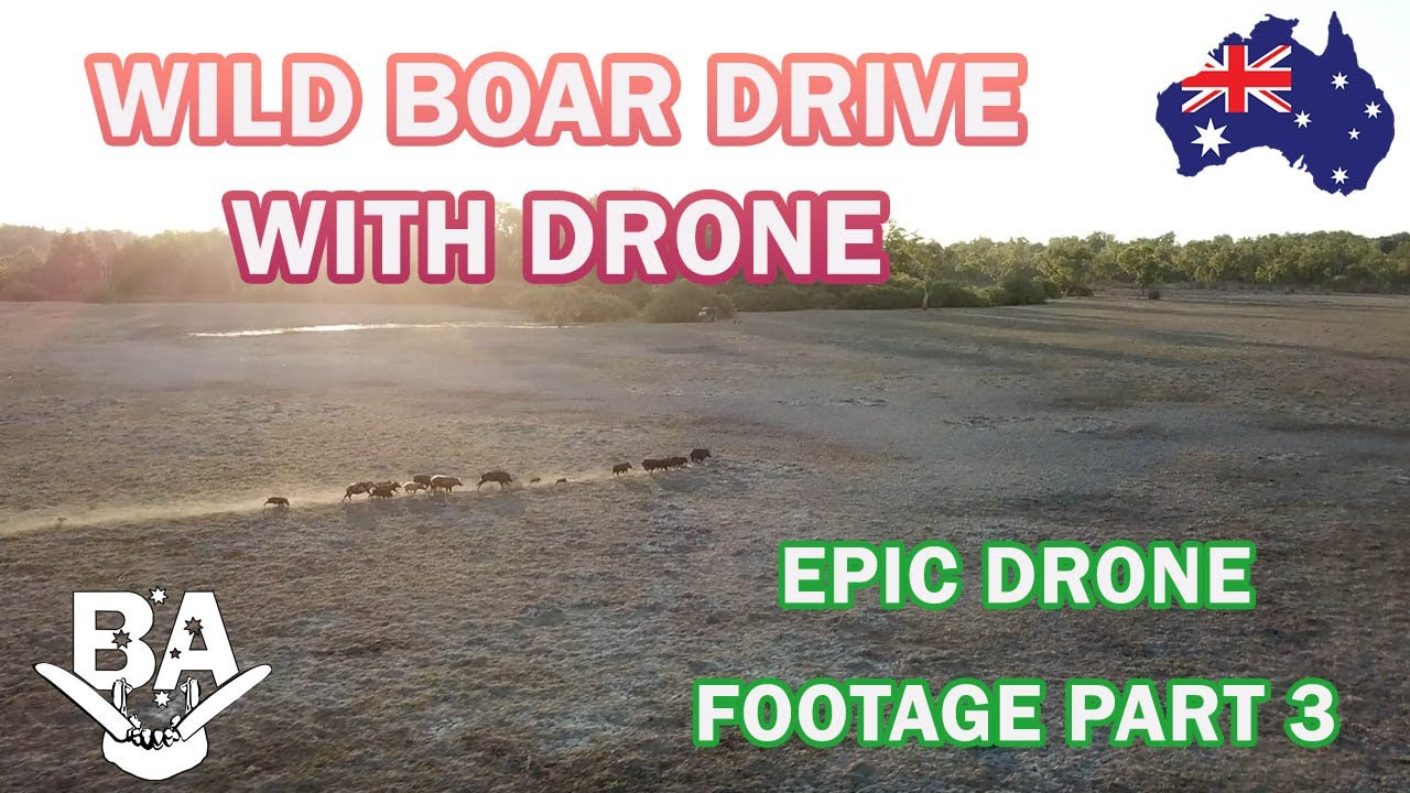 EPIC DRONE FINAL Part 3&4 -Pig hunting using drone to drive big wild hogs shoot across flat to shoot