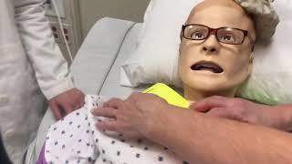 George Elementary | Nurse Morph 2