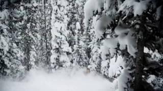Telluride Winter 2009/2010 Ski Teaser
