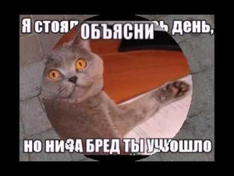 Новости - Приколы - Комиксы - Мемы