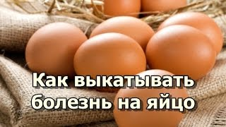 Как выкатывать болезнь на яйцо