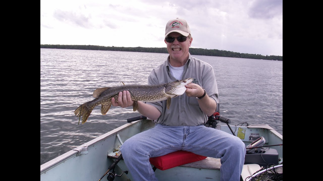 ely minnesota northern pike fishing youtube