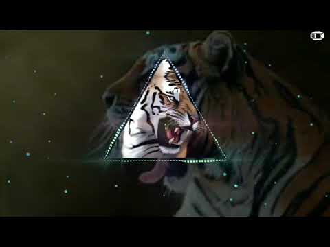 Tiger Dhun Dj Bass Song Remix By Ssk Dj Verified