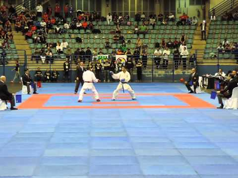 Karate 1 Premier League   Brazil 2015 FINAL KUMITE  67Kg Davis Ferreras REP DOMIN vs Luis Victor da
