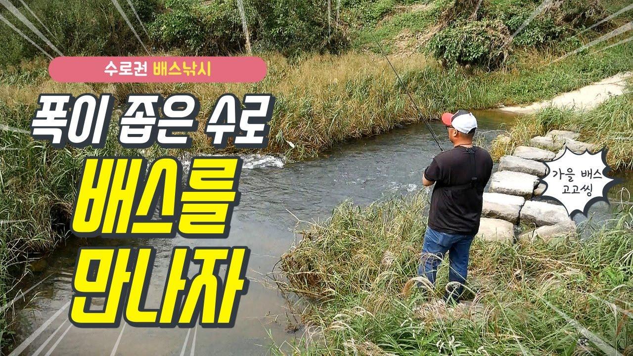 [박기현의 피싱로그99.9] #83 폭이 좁은 수로에서 만나는 가을 배스!!