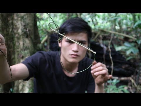 Traps And Grill, Survival In The Tropical Rainforest, Ep 33