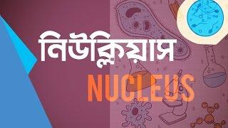 ০০৫) অধ্যায় ১ - কোষ ও এর গঠন : নিউক্লিয়াস (Nucleus) [HSC | Admission]