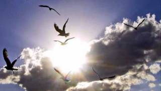 Common - The Light 2009 Remix (feat. Beatnick & K-Salaam)