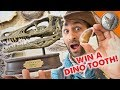 Dinosaur Treasure! - WILL YOU WIN?