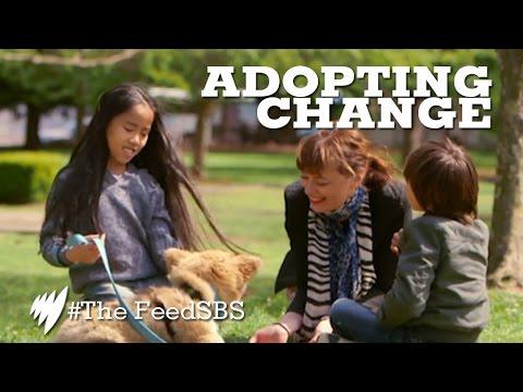 Adopting Foster Children