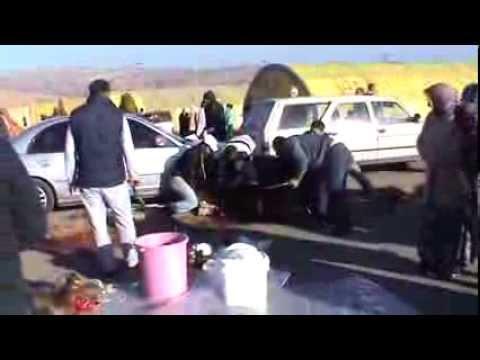 Kurban Kesimi 2013  KKB  34  Slaughter sheep women