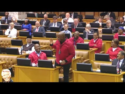 FUNNY - Watch Lots Of Deputy Presidents In Parliament