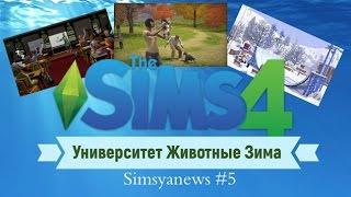 Sims 4 Университет Животные Зима Simsya News #5