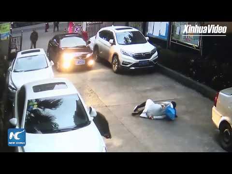 Wild boar knocks down woman in residential community in Chongqing