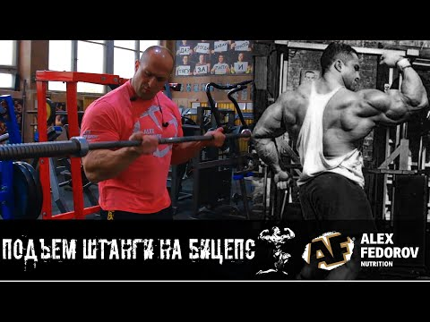 Подъем штанги на бицепс \  Barbell Curl
