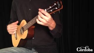 22 series ukulele comparison