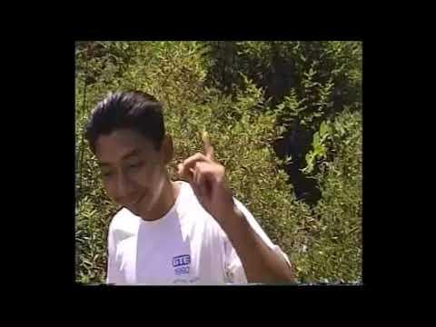July 1996. San Bernardino mountains, Fontana and Colton