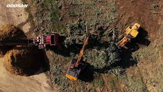 Video of Orchard Removal Using Heavy Equipment From Doosan