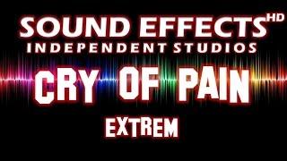 SFX - SOUND EFFECT: CRY OF PAIN EXTREME - SCHMERZSCHREI EXTREM