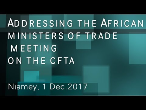 ECA Chief in Niamey @4th Meeting of African Trade Ministers