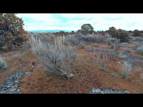 hells half acre with the drone and my long lost br by Joe Ross