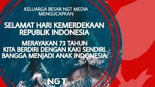 Download Video Happy Independence day indonesia 73th MP3 3GP MP4