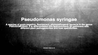 Medical vocabulary: What does Pseudomonas syringae mean