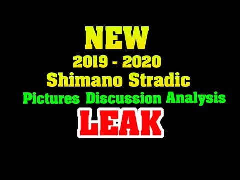 NEW 2019 Shimano Stradic FL  LEAKED Image Analysis / Discussion