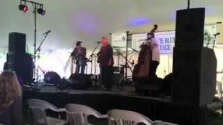 Tennessee sheiks-Louie bluie 2011