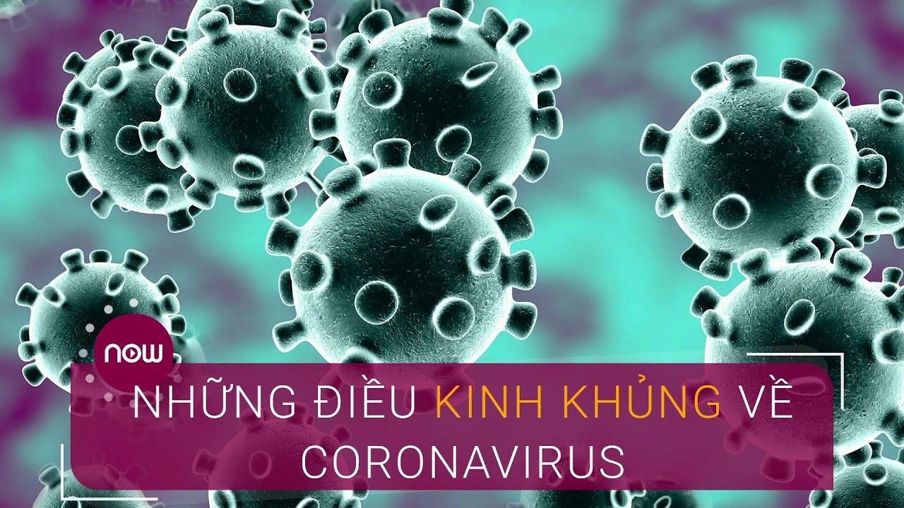 Những điều kinh khủng về Coronavirus | VTC Now
