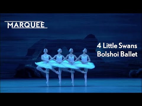 Swan Lake: 4 Little Swans [Bolshoi Ballet]