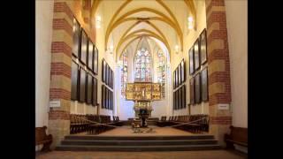 J.S. Bach Cantata Jesu, der du meine Seele, BWV 78