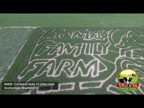 Thomas Family Farm Corn Maze 2016