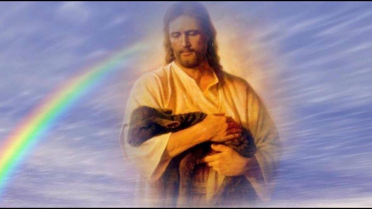 прошедшую картинки о боге и любви к богу рекламы системы торговли