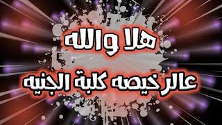 تصميم شاشه سوداء / كلمات مهرجان - هلا والله عالرخيصه كلبة الجنيه - جديد 2020