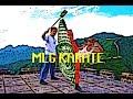 MLG Karate mp3