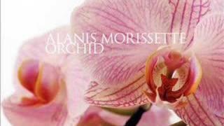 Video Alanis Morissette - Orchid (w/ Lyrics) download MP3, 3GP, MP4, WEBM, AVI, FLV Agustus 2018