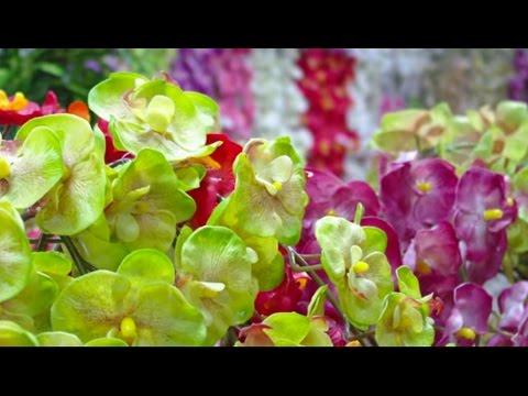 Цветы в интерьере. Магазин искусственных цветов. Artificial flowersиз YouTube · С высокой четкостью · Длительность: 3 мин51 с  · Просмотры: более 6.000 · отправлено: 10.12.2012 · кем отправлено: Оксана Соседка