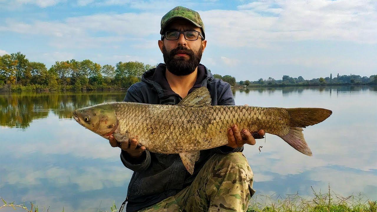 თევზაობა მასოს ტბაზე 2019 დიდი თევზის დაჭერა