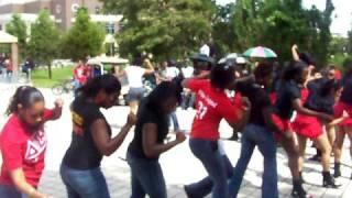 UCF Delta Sigma Theta Yard Show 08 (PART 4)