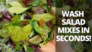 How to Make a Greens Bubbler to Wash Salad Mixes (Post Harvest)