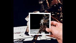 Le papere dell'Apollo 11