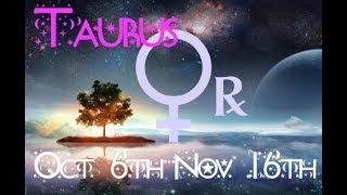 *~TAURUS-Their True Feelings Finally Revealed! ~*Venus Retrograde Reading 10/6-11/16