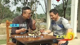 《生财有道》 20191216 生态中国乡村行 湖南宁乡:茶油真是好 荒山变银行| CCTV财经
