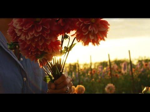 Floret Farm's Cut Flower Garden by Erin Benzakein and Julia Chai, Photography by Michele M. Waite