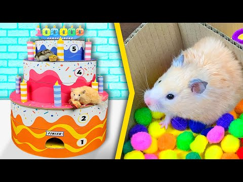 Hamsters In A 5 - Level Cake - Maze