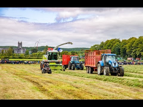 42-woman crew: Silage world record attempt in Co. Waterford (2017)
